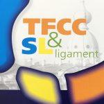 TFCC & SL LIGAMENT – WRIST ARTHROSCOPY COURSE